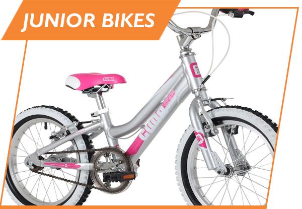bicycle junior bike rental